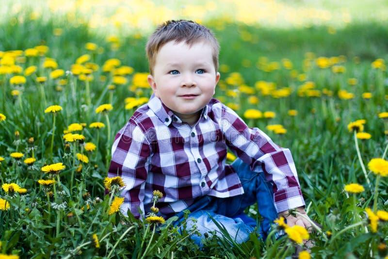 有户外花的逗人喜爱的小男孩 库存图片