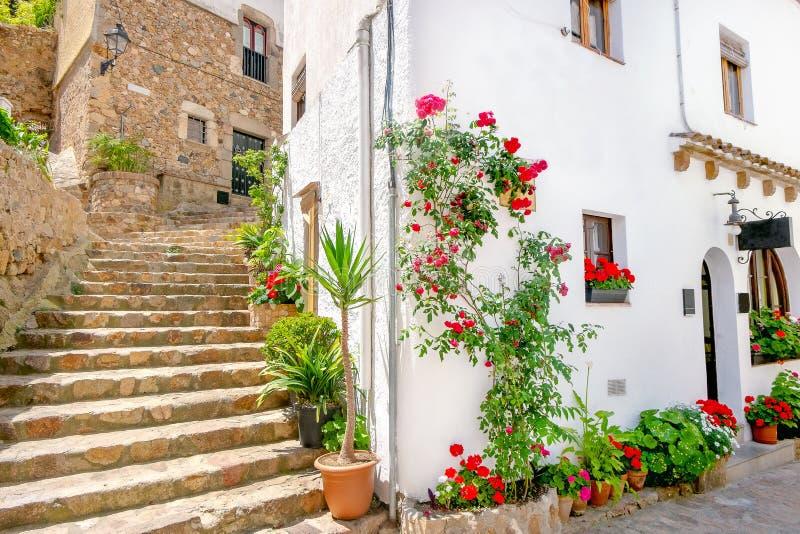 有房子美丽的门面的街道在托萨德马尔 肋前缘Brava,卡塔龙尼亚,西班牙 免版税库存照片