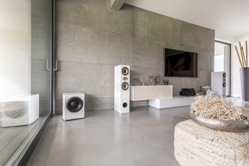 有扩音器的时髦的客厅 库存图片