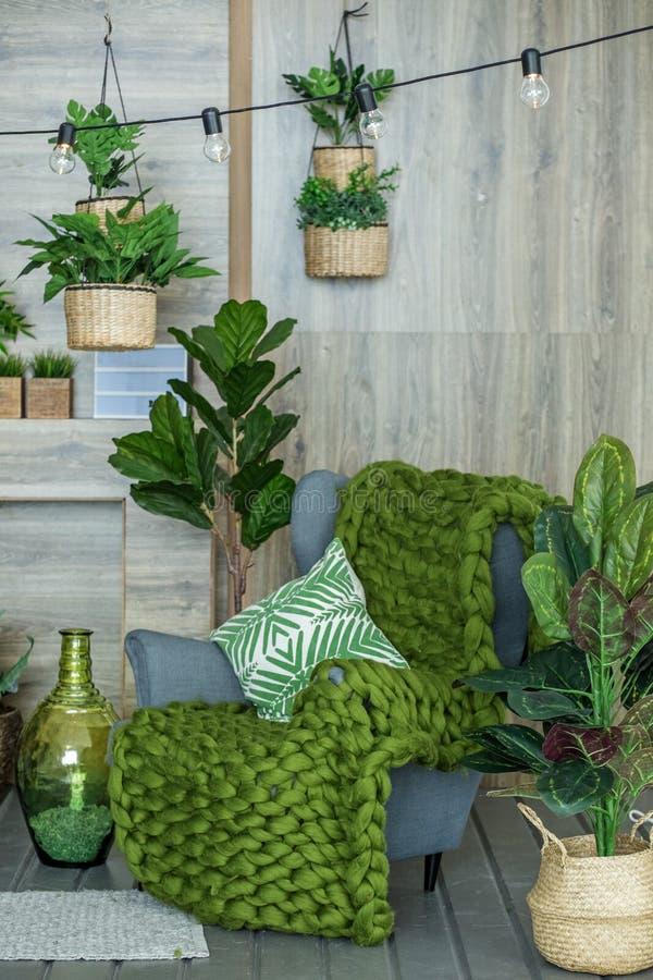 有扶手椅子和许多植物的客厅 生存roo的概念 库存图片
