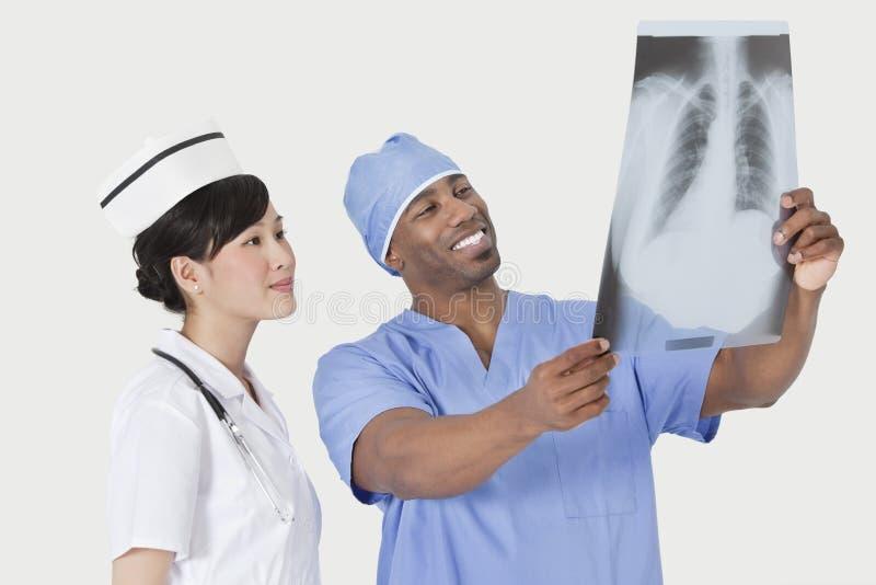 有护士审查的X-射线报告的男性外科医生在灰色背景 库存图片