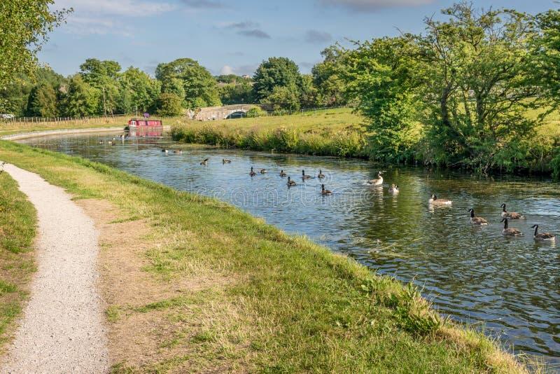 有拖曳道路的一条运河和运河闯入 免版税库存图片