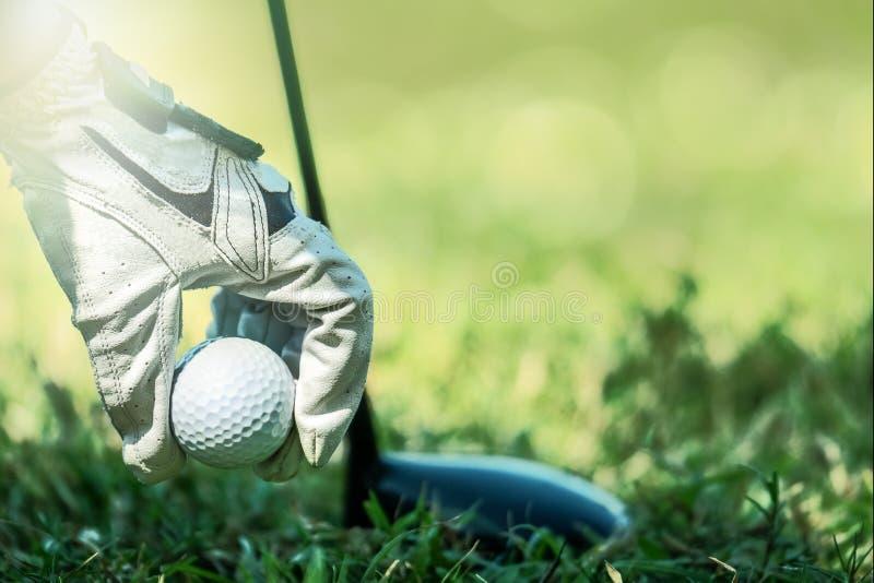 有拾起高尔夫球的手套的高尔夫球运动员手 免版税图库摄影