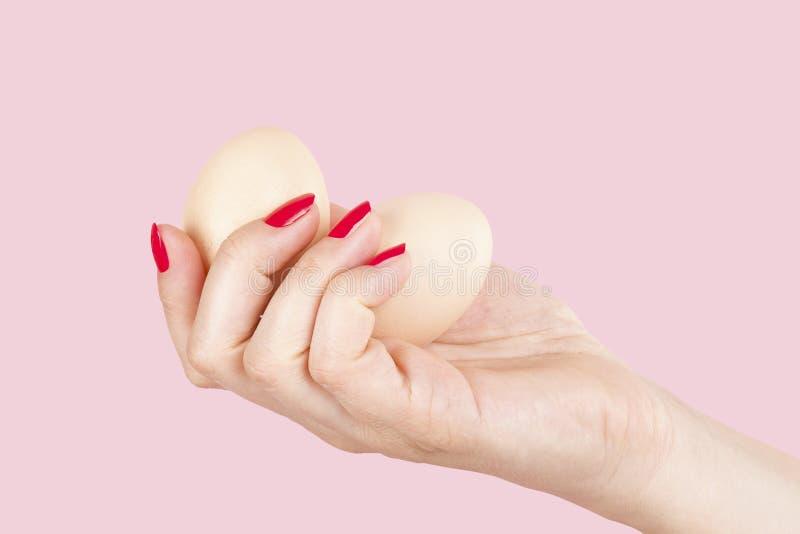 有拿着两个鸡蛋的红色指甲盖的女性手 库存图片