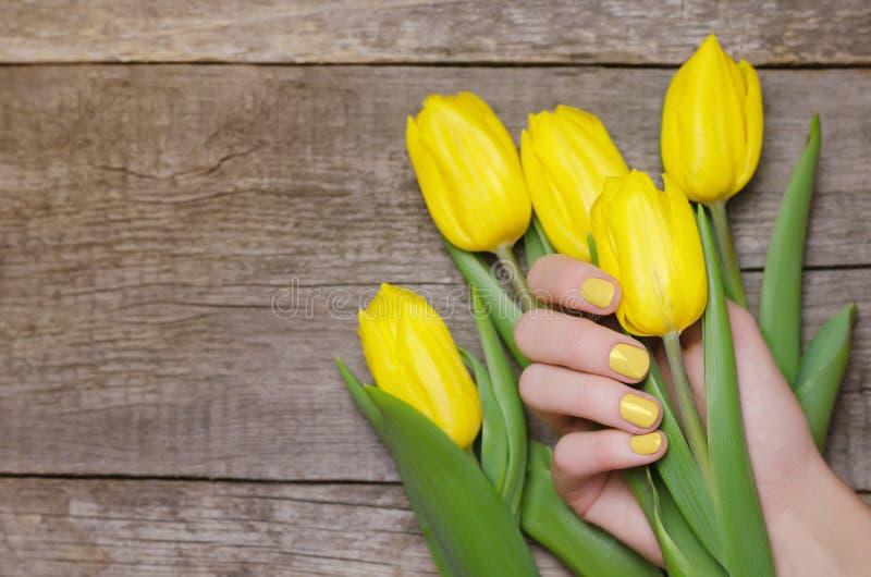 有拿着黄色郁金香的黄色钉子的女性手 免版税库存图片