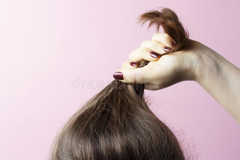 有握头发,桃红色背景,护发概念的红色修指甲的女性手 免版税图库摄影