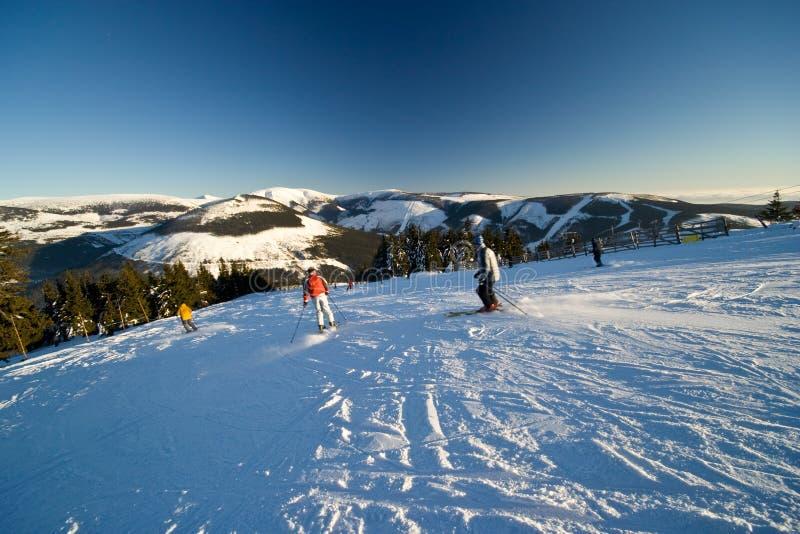 有效的人滑雪 免版税图库摄影