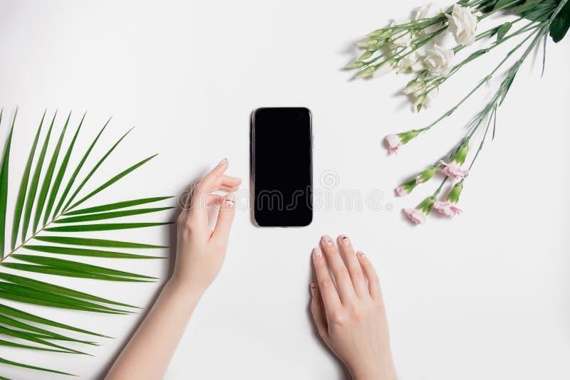 有整洁的轻的修指甲谎言的美丽的穿着考究的妇女的手在iPhone附近的桌上 时兴的绿色棕榈叶,精美桃红色 库存图片