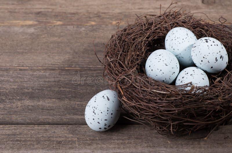 有斑点的蓝色鸡蛋 免版税库存图片