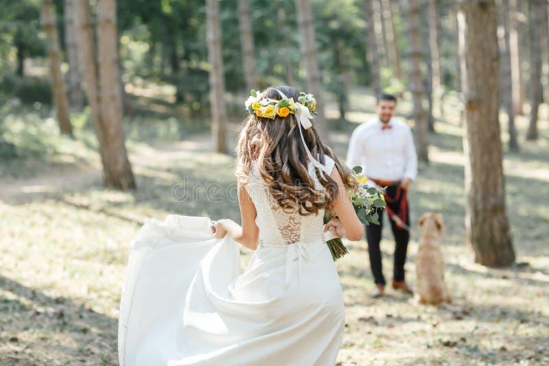 有新娘和狗的新郎 免版税图库摄影