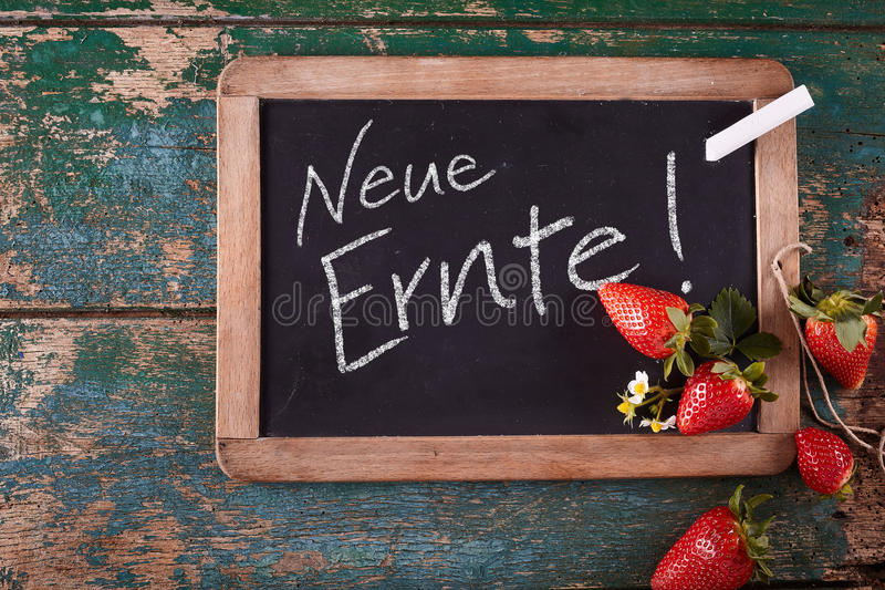 有新收获文本的黑板用德语 免版税图库摄影