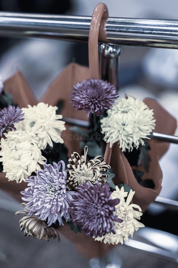 有新紫罗兰的,紫色花伞 秋天装饰,自然,葡萄酒背景的美丽如画的颜色,季节性 免版税库存图片