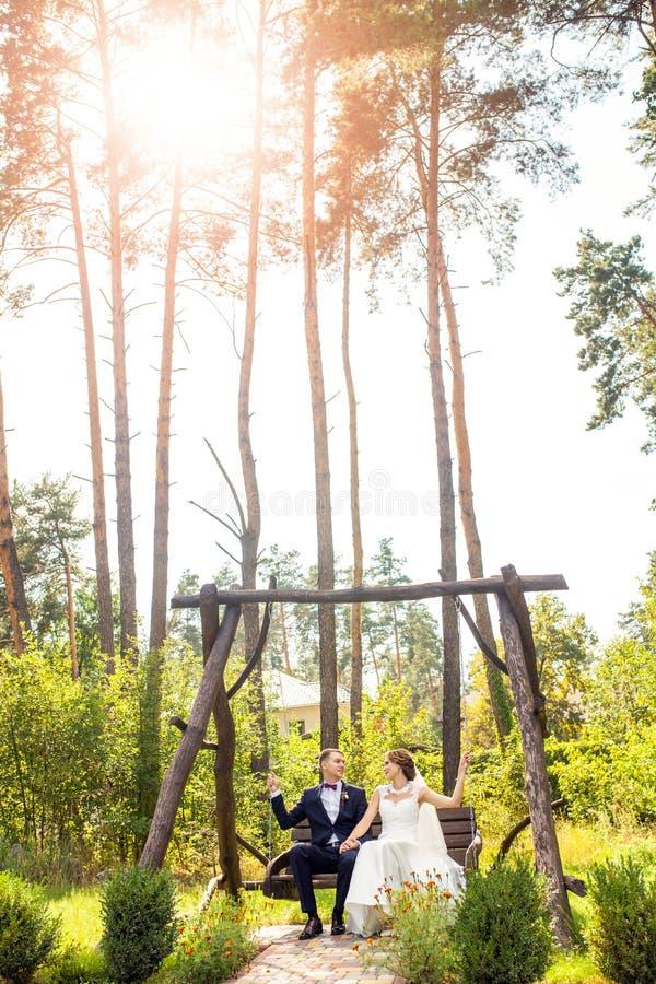 有新郎的可爱的新娘坐在树中的木摇摆 免版税库存图片