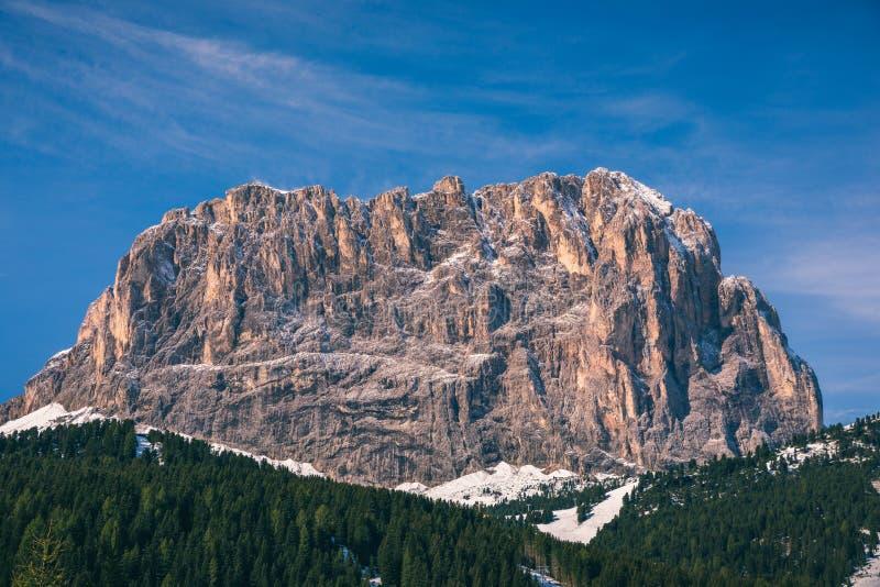 有新鲜的粉末雪的美好的冬天全景 风景与 库存照片