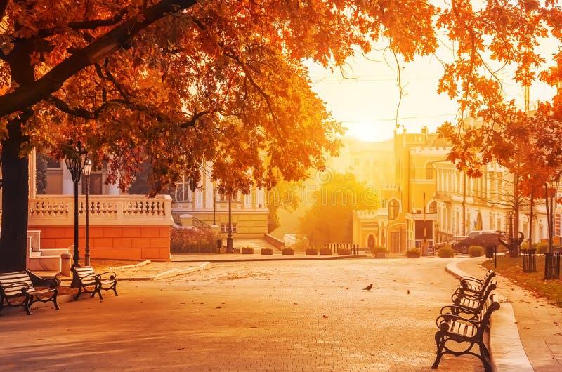 有旧建筑的秋城 林荫大道,长椅,树叶黄色 敖德萨 乌克兰 库存照片