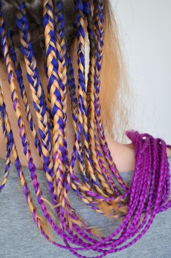 有时兴的套的一个女孩多彩多姿的辫子Kanekalon 头发色的人为子线  免版税库存照片