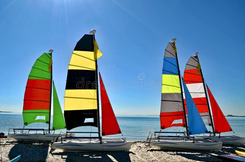 有明亮地色的风帆的四艘小筏在Key Biscayne海滩 免版税库存照片