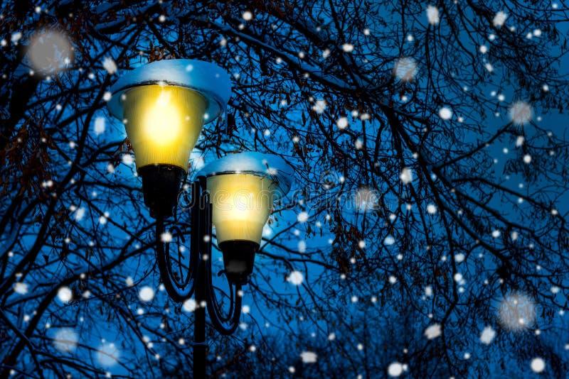 有明亮的光的灯笼在snowfall_期间的夜公园 免版税库存图片