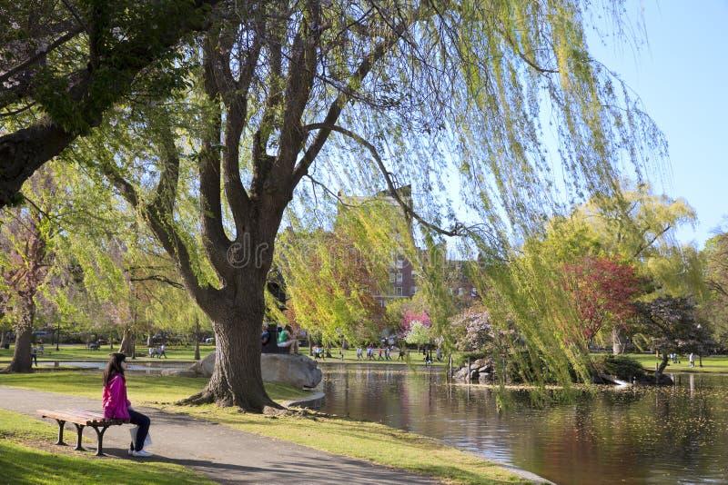 有春天的第一个标志的波士顿公园 免版税图库摄影