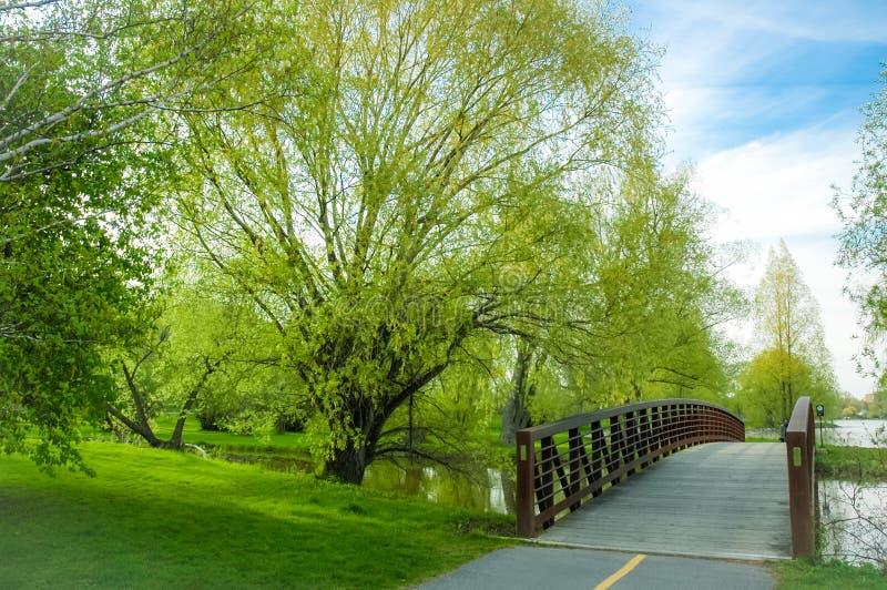 有春天的Dows湖公园步行桥在盛开 免版税库存图片