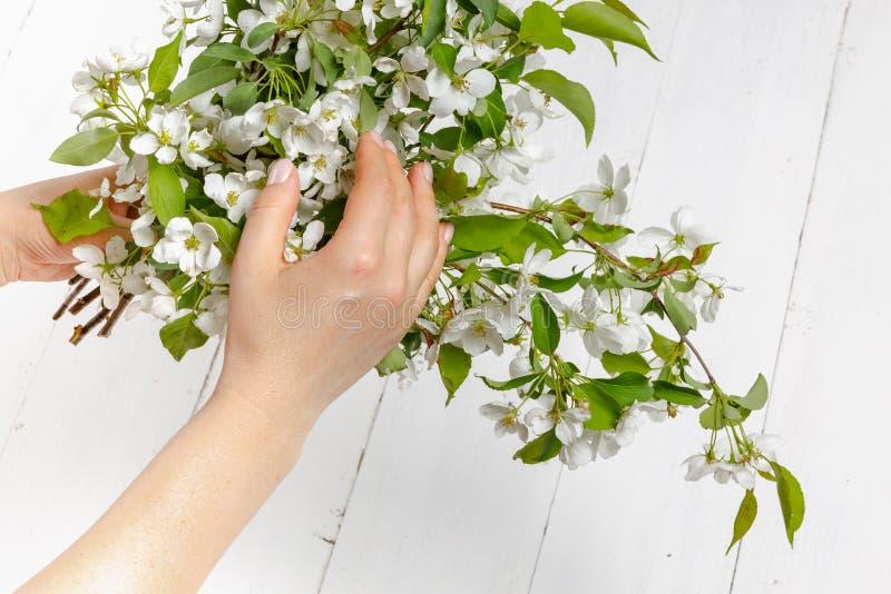 有春天花的柔软女性手 柔软,皮肤护理,女孩举行春天花的手的概念 库存图片