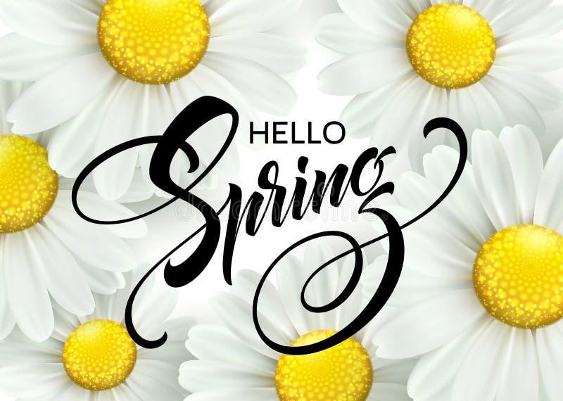 有春天花的-开花的戴西书法题字你好春天 也corel凹道例证向量 皇族释放例证