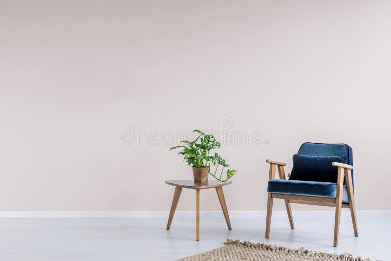 有木制框架的藏青色扶手椅子在与空的桃红色墙壁和拷贝空间的时髦客厅内部书橱的 实际 免版税库存图片