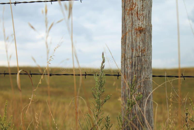 有木岗位的Barbwire篱芭 免版税库存照片