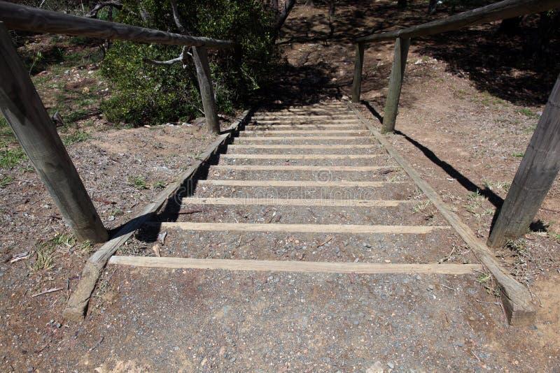 有木扶手栏杆的老木台阶 免版税库存照片