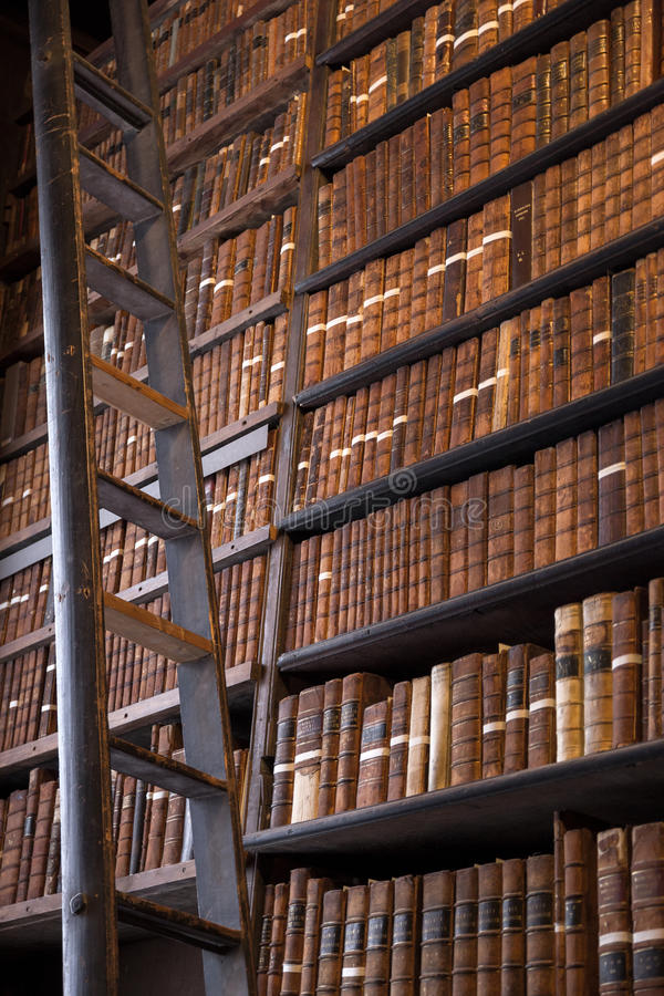 有木梯子的葡萄酒图书馆 图库摄影