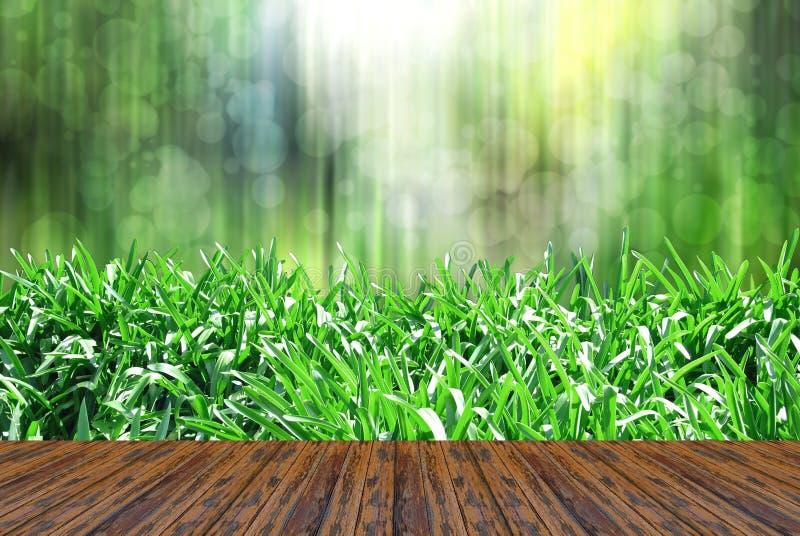 Download 有木的草甸 库存例证. 插画 包括有 面板, 夏天, 纹理, 问题的, 木头, 木条地板, 草原, 本质 - 30336216