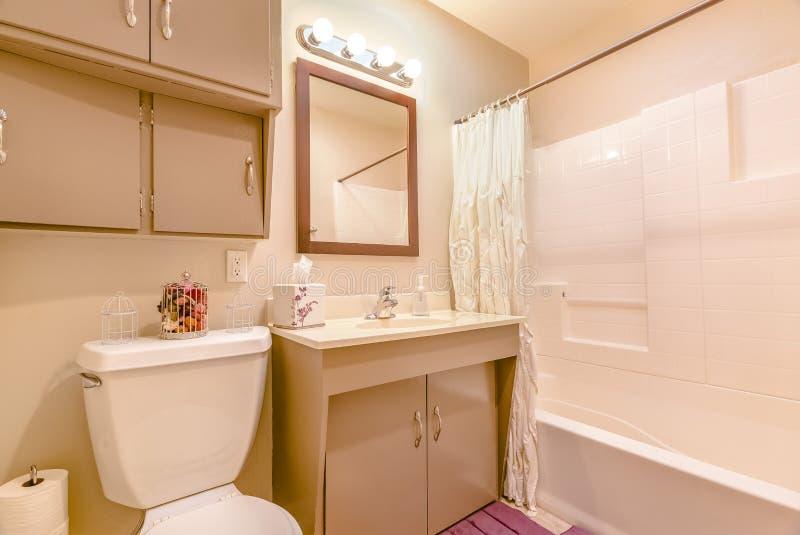 有木盆和水槽的新建工程现代家庭内部卫生间 免版税库存照片