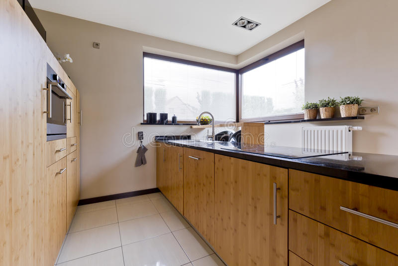 有木设计的宽敞厨房 库存图片