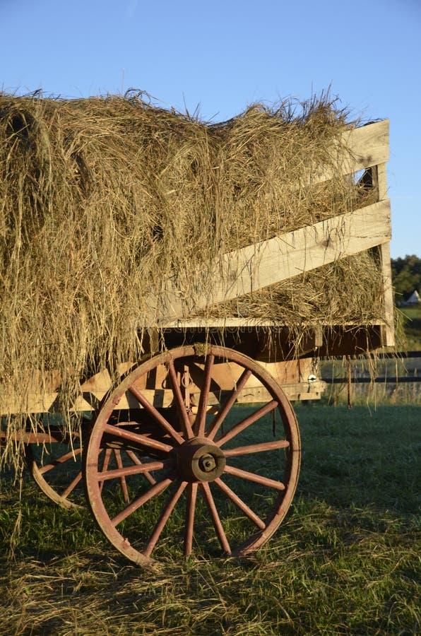 有木轮子的无盖货车有很多宽松干草 免版税库存图片