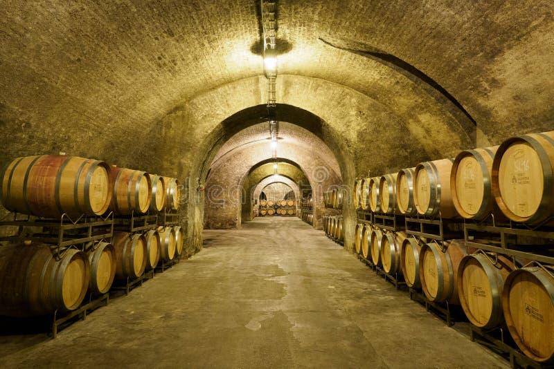有木酒桶的老葡萄酒库 免版税图库摄影