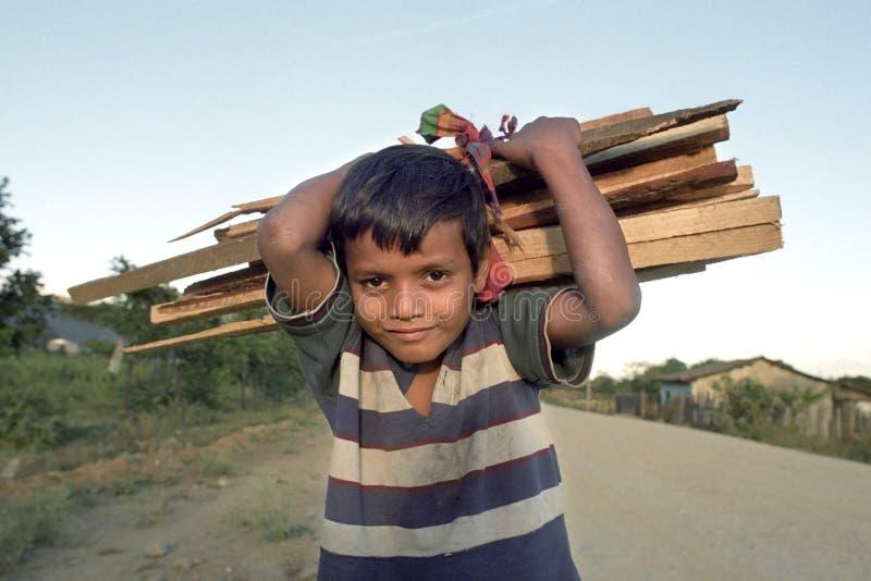 有木柴的画象小拉丁美州的男孩在脖子 库存图片