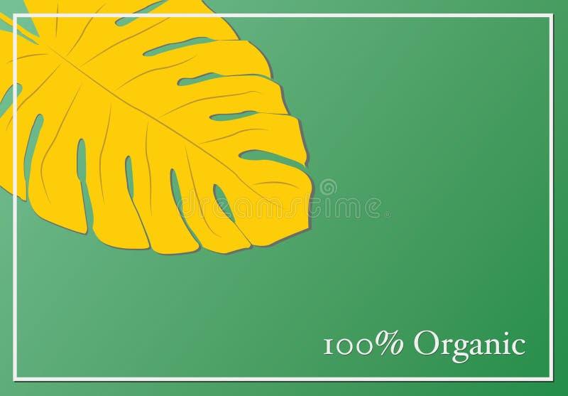 100%有机产品横幅 香蕉叶子 绿色和黄色collo 向量例证