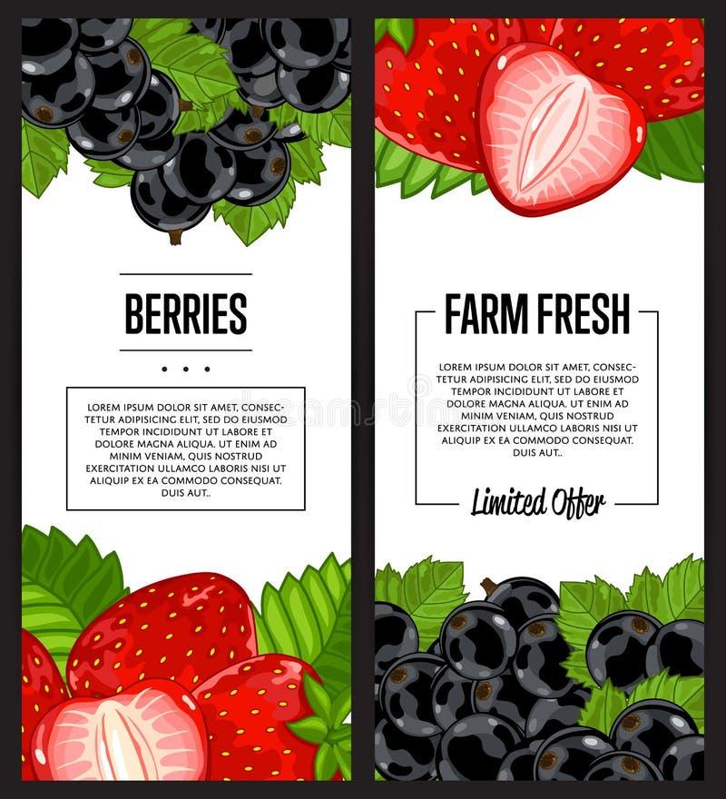 有机农厂新莓果飞行物集合 库存例证