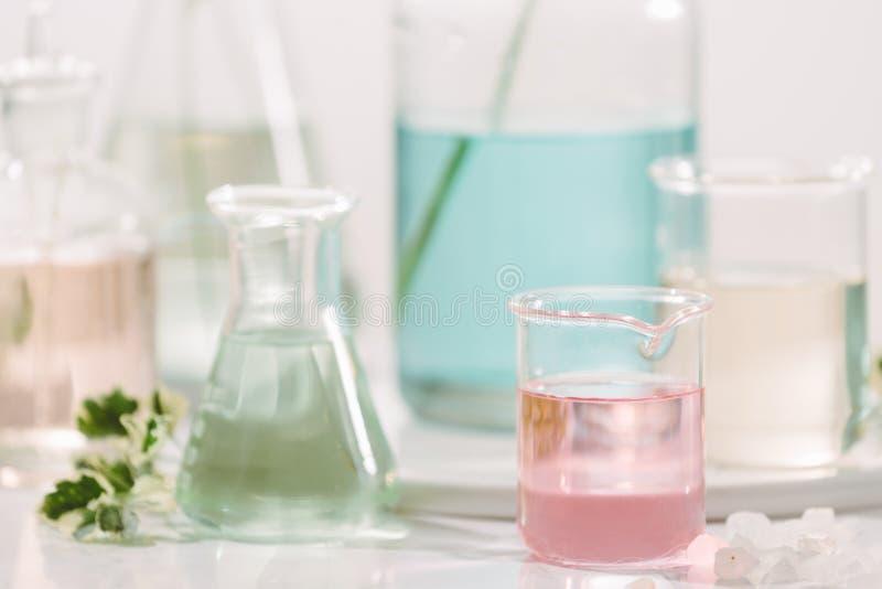 有机化妆skincare产品标签科学概念的空白的瓶 免版税图库摄影