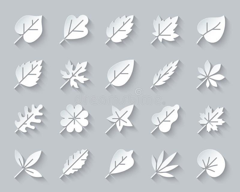 有机叶子简单的纸削减了象传染媒介集合 库存例证