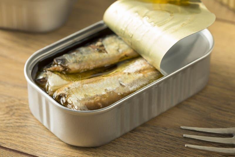 有机咸罐装沙丁鱼 免版税库存图片