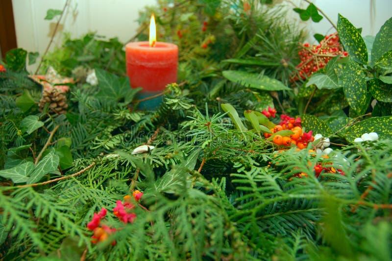 有机圣诞节的装饰 免版税库存照片