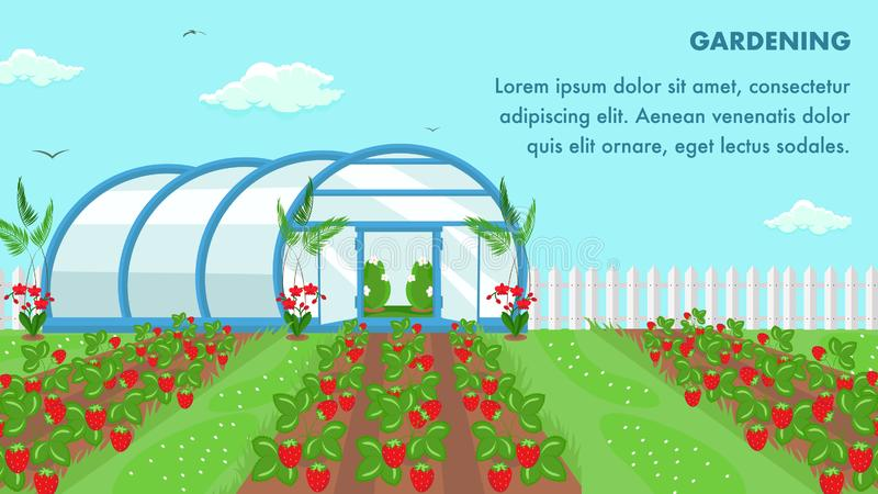 有机果子耕种网横幅模板 皇族释放例证