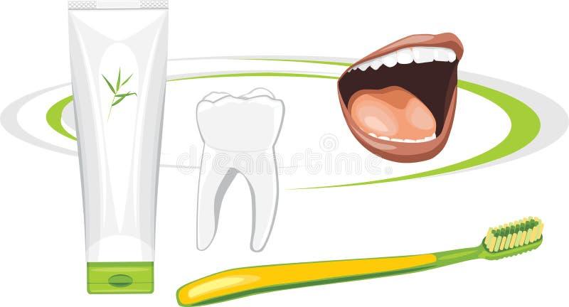 有机牙膏 健康牙 向量例证