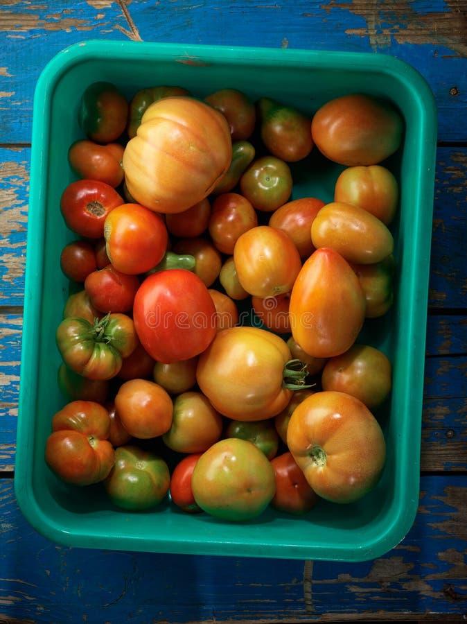 有机红色蕃茄 库存照片