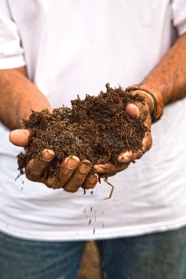 有机肥料 免版税库存图片