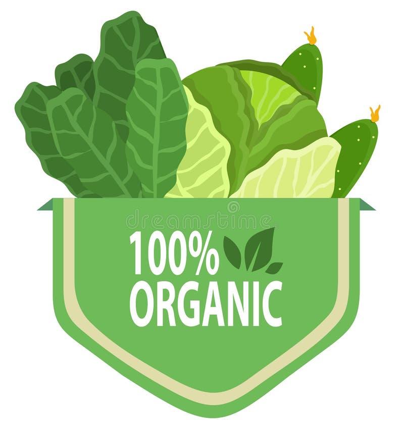 有机自然食物,100%新绿色 库存例证