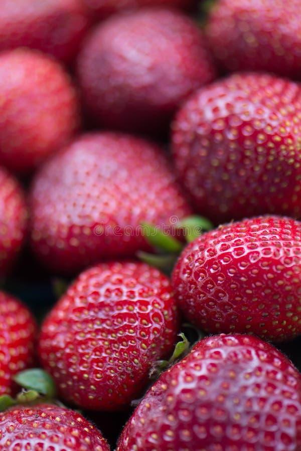 有机草莓在一个农夫市场上在加利福尼亚 免版税库存照片