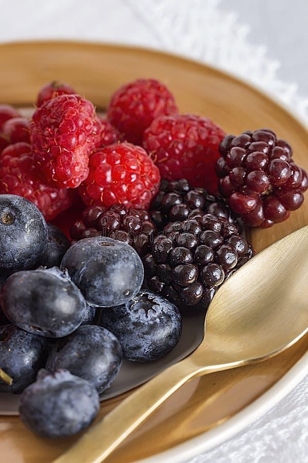 有机莓、蓝莓和红色莓果 库存照片