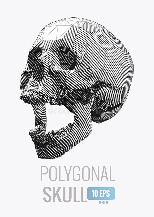 有条纹线的被隔绝的容量多角形头骨 库存例证